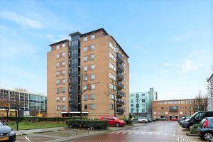 For rent: Apartment Amsterdam Wildeman