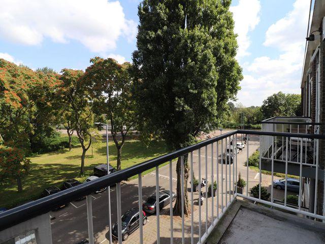 For rent: Apartment Rotterdam Peppelweg