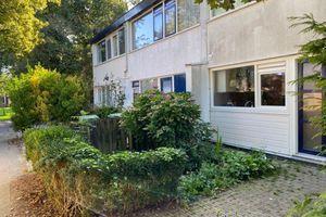 For rent: Room Leeuwarden Gerben van Colmjonwei