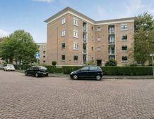 Appartement Okeghemlaan in Breda
