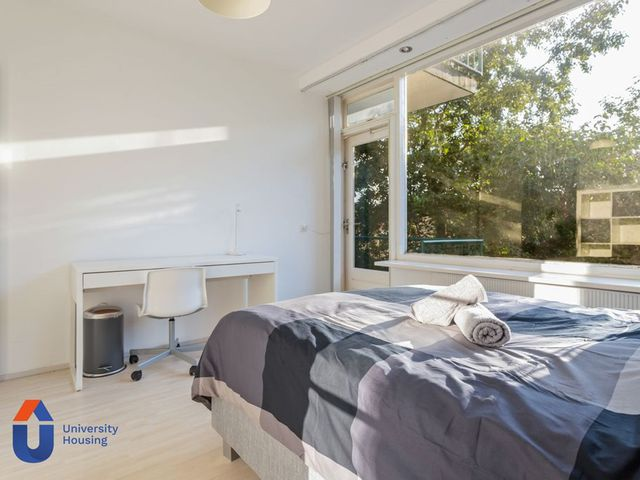 For rent: Room Rotterdam Aernt Bruunstraat