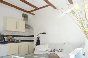 For rent: Apartment Leiden Hogewoerd