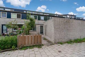 Te huur: Kamer Delft Steltloperstraat