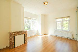 For rent: Apartment Rotterdam Lepelaarsingel