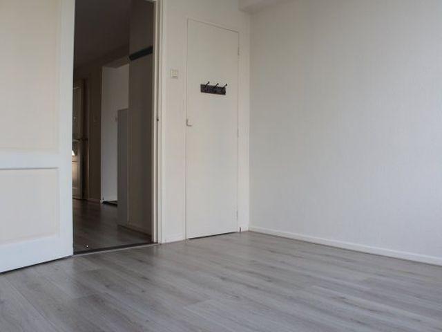 Te huur: Appartement Den Haag Louis Davidsstraat