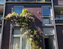 House Scheepstimmermanstraat in Amsterdam