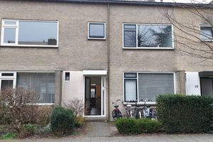 Te huur: Kamer Groningen Kometenstraat