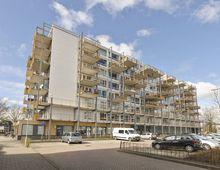 Apartment Zandsteen in Hoorn (NH)
