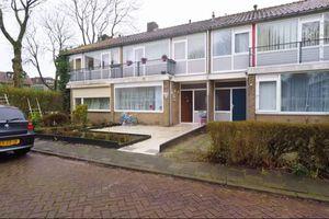 For rent: House Breda Tijgerhof