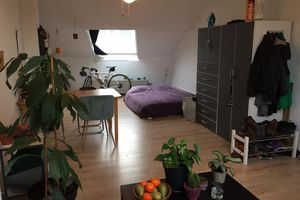 For rent: Room Maastricht Brusselsestraat