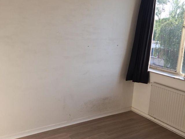 For rent: Room Eindhoven Elckerlyclaan