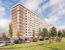 Apartment Vlaardingerdijk in Schiedam