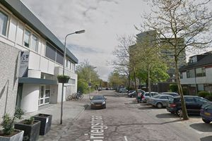 For rent: Apartment Delft Griegstraat