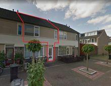 Apartment Ananasstraat in Utrecht