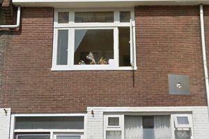 Te huur: Kamer Utrecht St.-Bernulfstraat