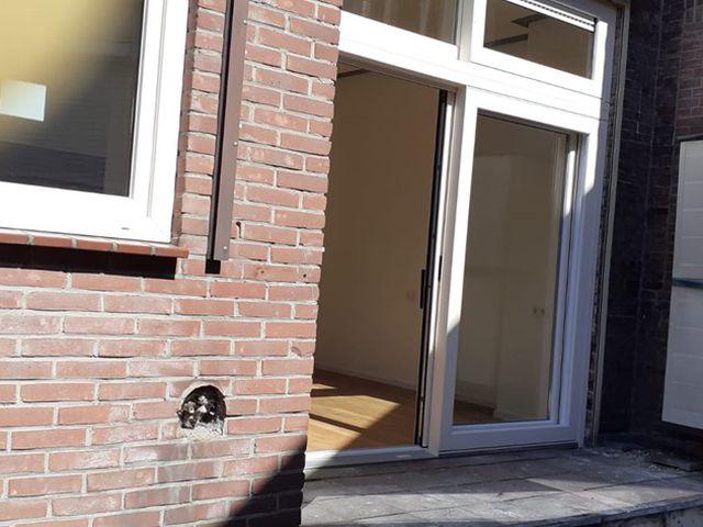 Te huur: Appartement Haarlem Kennemerstraat
