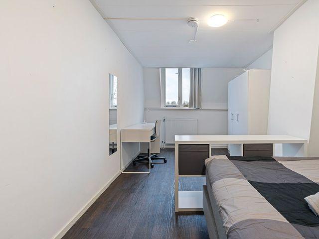 For rent: Room Utrecht Jan Pieterszoon Coenstraat