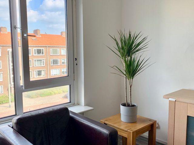 For rent: Apartment Voorburg Koningin Julianalaan