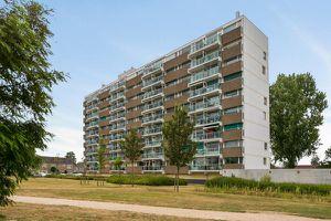 For rent: Apartment Oost-Souburg Wilgenstraat