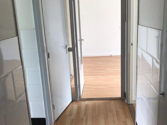 Te huur: Appartement Rotterdam Ellewoutsdijkstraat