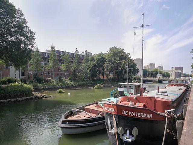 Te huur: Kamer Rotterdam Bosland