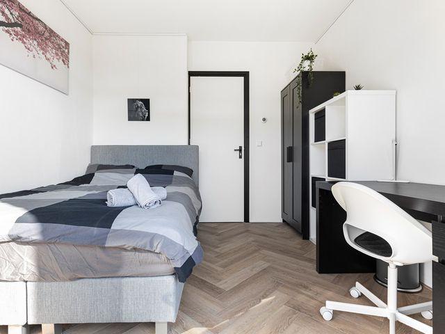 For rent: Room Amsterdam Louis Chrispijnstraat