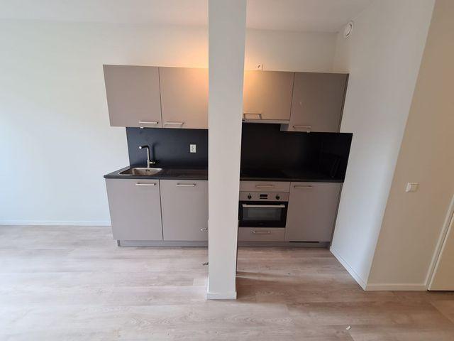 For rent: Apartment Leiden Oude Herengracht