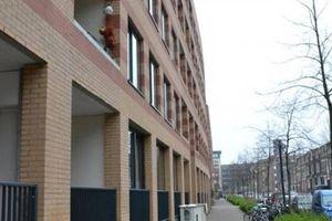For rent: Apartment Utrecht Hartingstraat