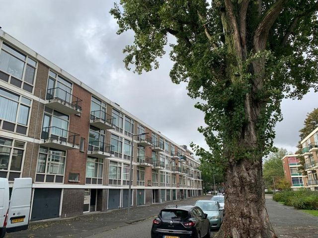 For rent: Apartment Rotterdam Kapershoek