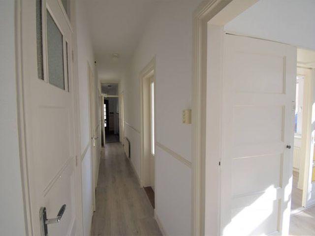 For rent: Apartment Rotterdam Abraham Kuyperlaan
