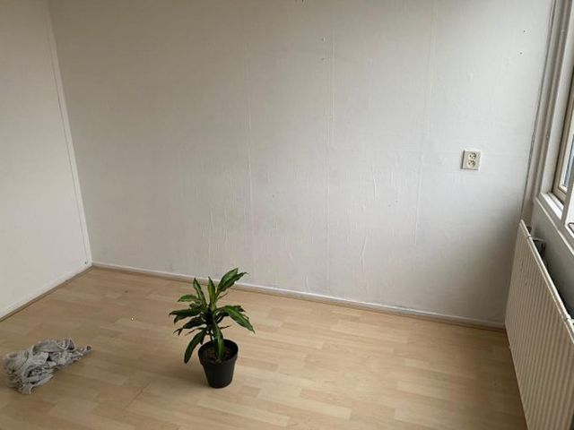 Te huur: Kamer Leeuwarden Epemastate