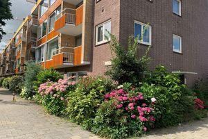 For rent: Apartment Diemen Prins Bernardlaan