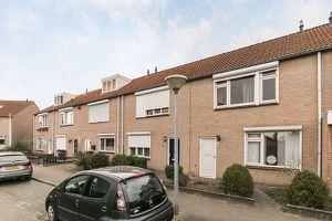 For rent: House Eindhoven Den Bult