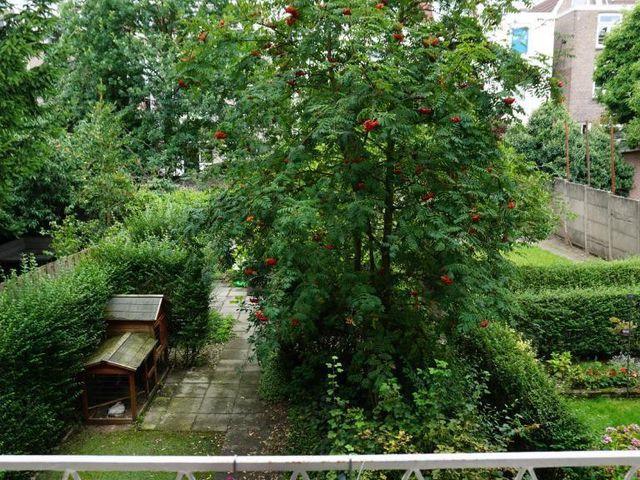 Te huur: Appartement Arnhem Sonsbeeksingel