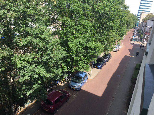 For rent: Room Arnhem Renssenstraat