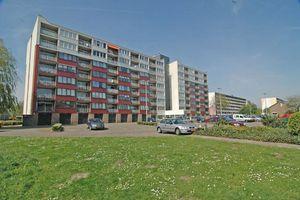 For rent: Apartment Breda Lelystraat