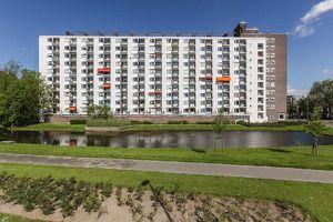Te huur: Appartement Rotterdam Suze Groeneweglaan