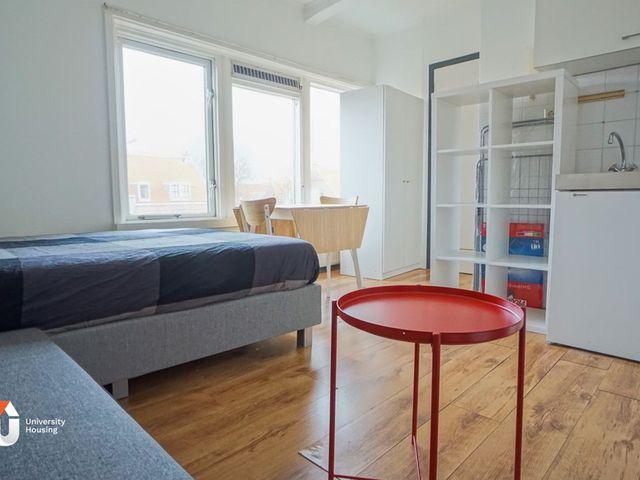 For rent: Studio Utrecht Amsterdamsestraatweg