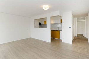 For rent: Apartment Den Haag Torenstraat