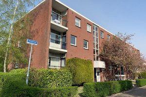 For rent: Apartment Breda Steijnlaan