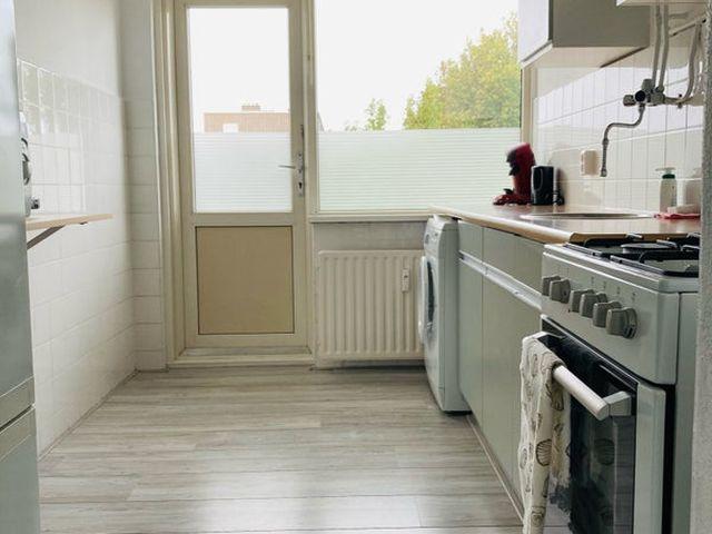 Te huur: Appartement Spijkenisse Rembrandtstraat