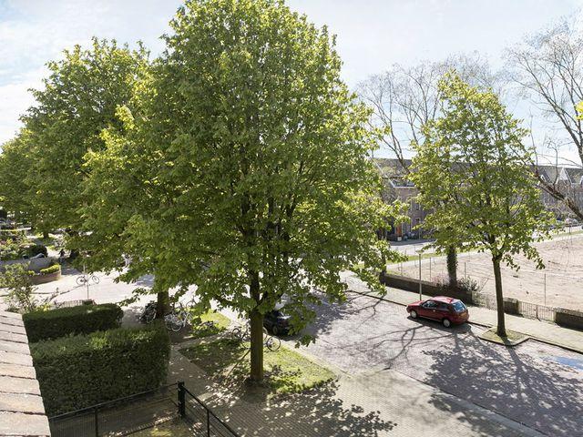 Te huur: Kamer Arnhem Van Oldenbarneveldtstraat