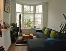 Apartment Nicolaas Tulpstraat in Den Haag