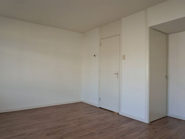 For rent: Apartment Rotterdam Wolphaertsbocht
