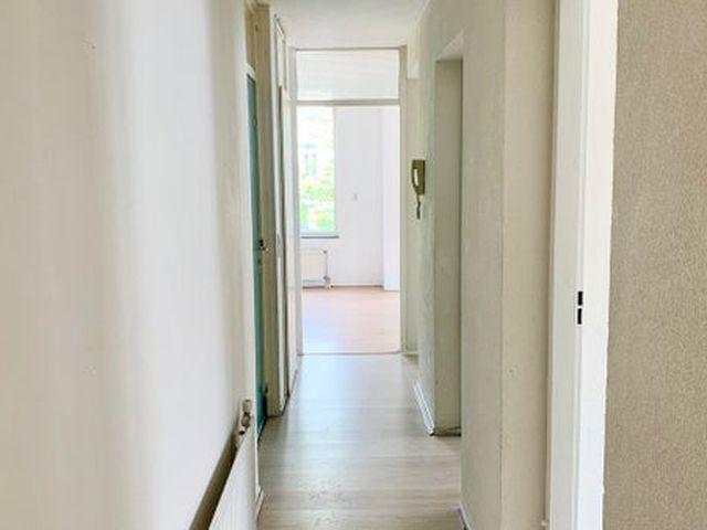 For rent: Apartment Den Haag Houtzagerssingel