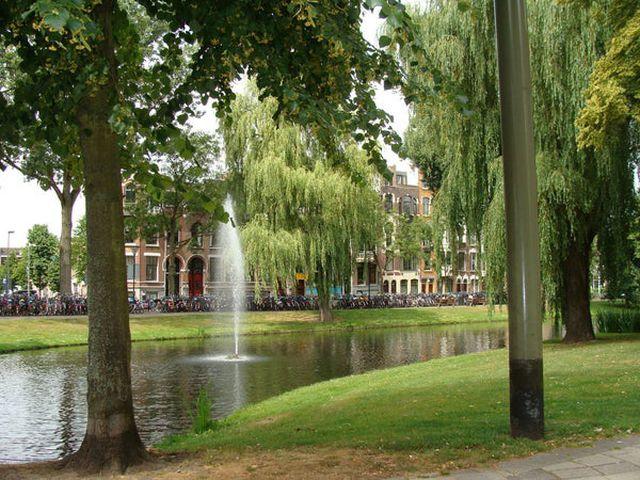 For rent: House Rotterdam Spoorsingel