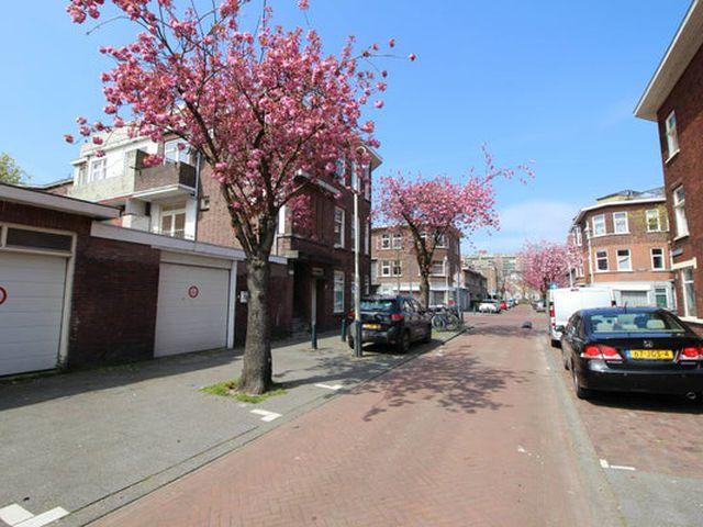 Te huur: Studio Den Haag Van den Berghstraat