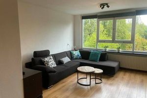 For rent: Apartment Amsterdam 's-Gravesandeplein