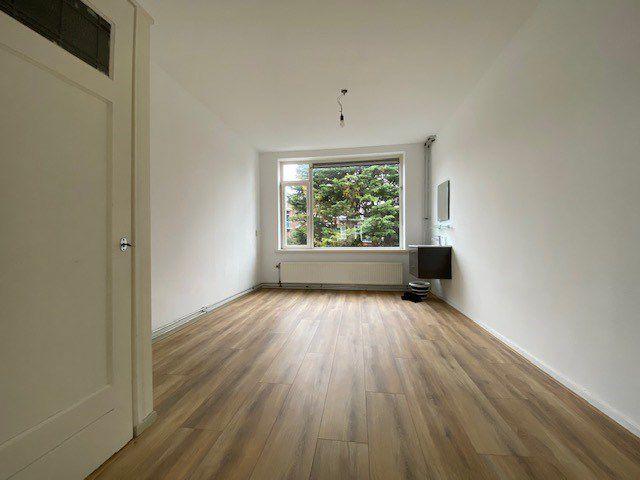For rent: Apartment Rotterdam Buizerdstraat
