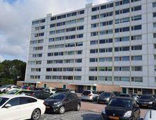 Apartment Berkenstraat in Oost-Souburg